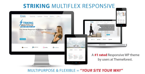 Striking MultiFlex & Ecommerce Responsive WP Theme