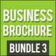 Business Brochure bundle 3 - GraphicRiver Item for Sale