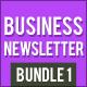 Business Newsletter Bundle 1 - GraphicRiver Item for Sale