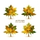 Autumn Vector Leaves - GraphicRiver Item for Sale