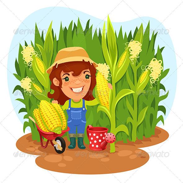 Harvesting Female Farmer in a Cornfield