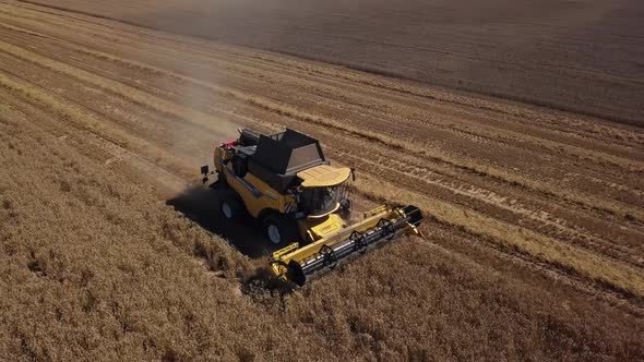 Aerial Combine Harvester in Action