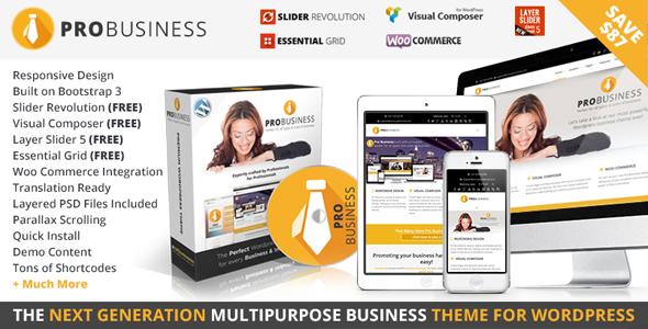 PRO Business - Responsive Multi-Purpose Theme