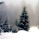 Winter Fog - AudioJungle Item for Sale
