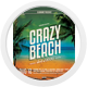 Crazy Beach Party Flyer - GraphicRiver Item for Sale