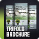Trifold Brochure Vol. 6 - GraphicRiver Item for Sale