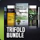 Trifold Brochure Bundle Vol. 4-5-6 - GraphicRiver Item for Sale