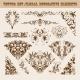 Vector Set of Floral Decorative Elements - GraphicRiver Item for Sale