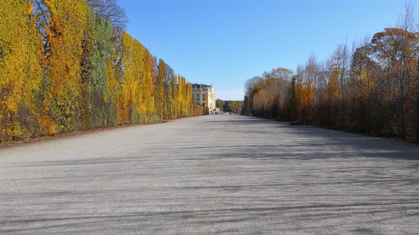 Walking Along Alley in Autumn Park