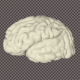 3D Brain rotates - VideoHive Item for Sale