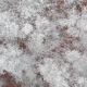 Aerial Above Frozen Ice Trees - VideoHive Item for Sale