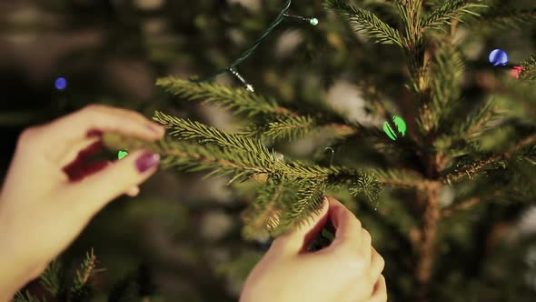 Decorating on Christmas Tree.