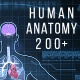 Human Anatomy Hud Elements  200 - VideoHive Item for Sale